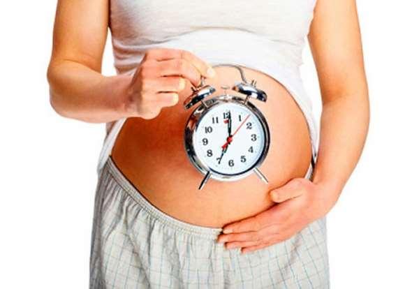 Определение срока беременности