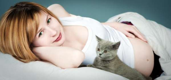 Токсоплазмоз: миф или реальная угроза при беременности?