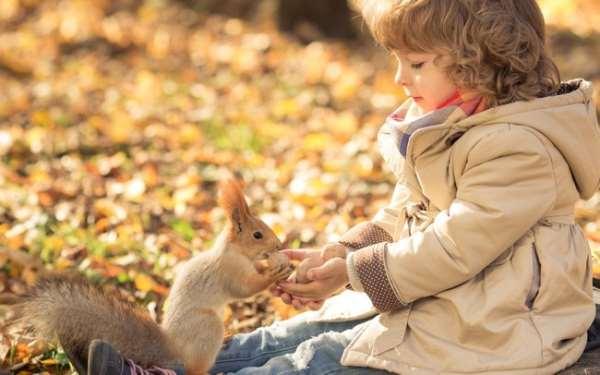 Игры для детей на природе