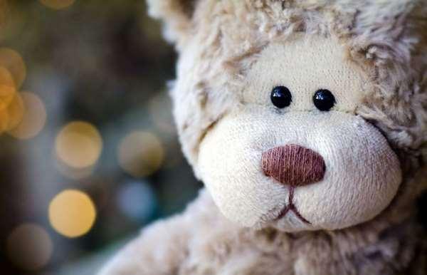 Разве можно отказаться от плюшевого Тедди?