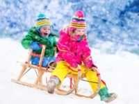 Как выбрать подходящие детские санки для двойни?