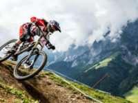 Горный велосипед и важные критерии его выбора