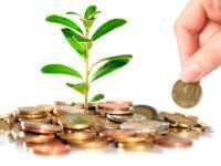 Как получать доход до 24% годовых без рисков