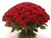 Роскошный букет из 101 розы на лучших условиях