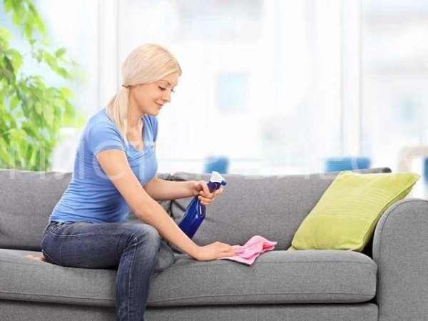 Как удалить кошачий запах с мягкой мебели