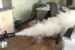 Эффективный способ удаления неприятного запаха в комнате