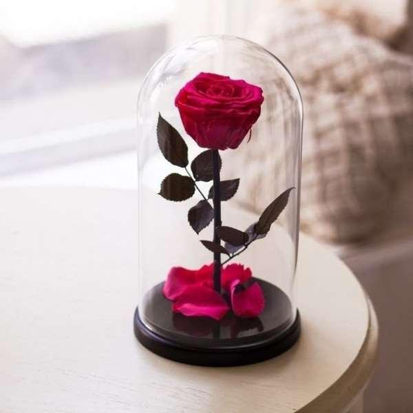 Вечная красота   роза в колбе
