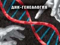 Генеалогический днк тест и его особенности