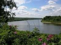 Замечательный отдых в экологически чистой местности