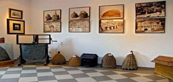 В Черновцах открылся уникальный музей, посвященный пчеловодству
