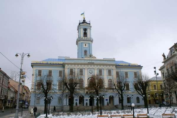 Мэрия Черновцов подержала петицию насчет стерилизации бездомных животных