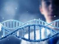 Родителям об опасности генетических заболеваний