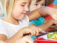 Доставка питания для школ и детских садов от «Yummy Tummy»