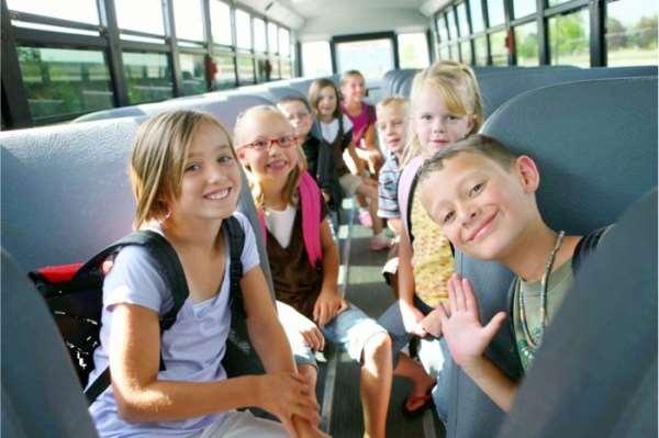 Польза экскурсий для школьников начальных классов