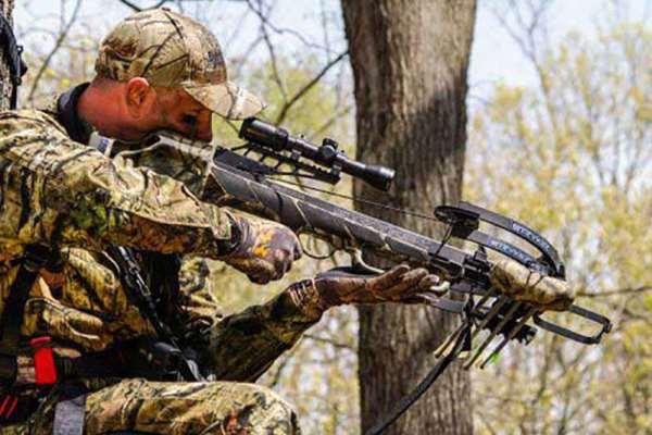 Основные требования к арбалетам для охоты