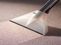 Как проводится профессиональная химчистка ковров?
