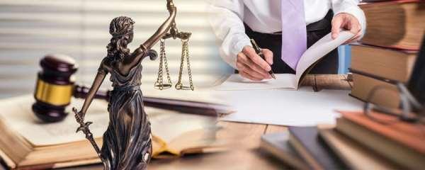 В чем может заключаться помощь юриста?