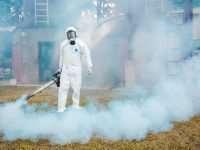 Фумигация помещений от паразитов