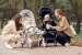 Выбираем коляску для ребенка с учетом ее габаритов и колес