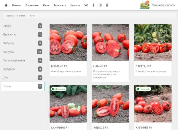 Семена томатов от компании «Сингента»